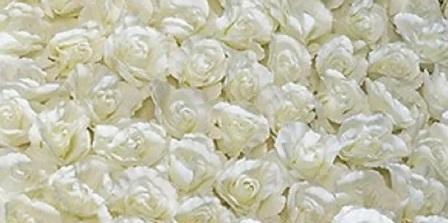 flower wal3l